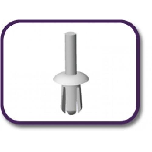 Push in rivet series